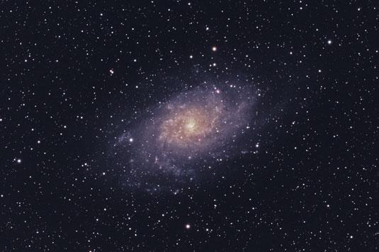 388538.image3.jpg