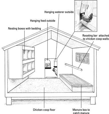 Anatomy of a Garden Chicken Coop - dummies
