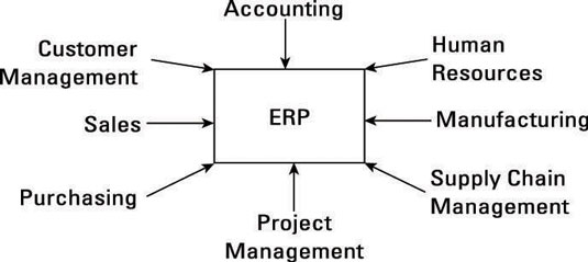The teams involved in a successful Enterprise Resource Planning.