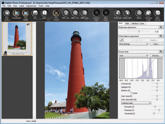 Editing an image on Digital Photo Professional.