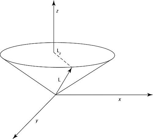 L and L<i></noscript><sub>z</sub></i>.&#8221;/></p> <div class=