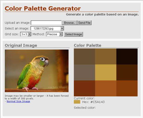 Helpful Tools for Creating Color Schemes - dummies