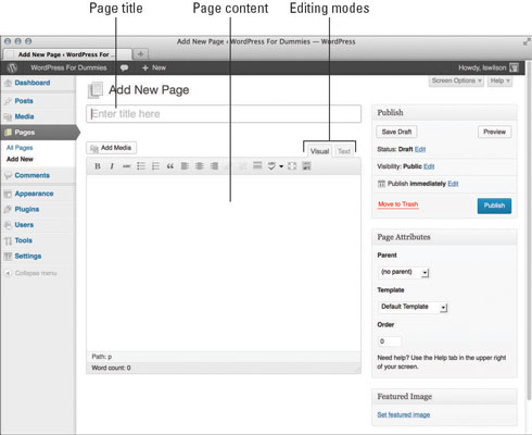 How To Add A Blog To Your Wordpress Website Dummies