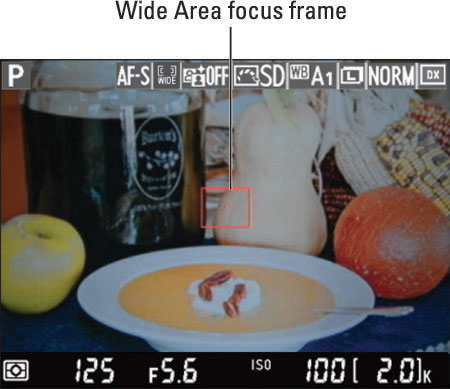 How to Set the AF-Area Mode on Your Nikon D7100 - dummies