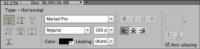 Photoshop's Tool Options.