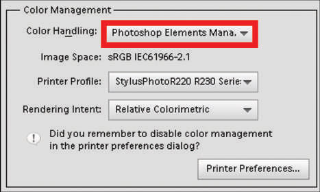 Print a Photo with Elements Managing Color - dummies