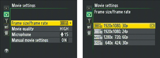 This option is one of two that affect movie quality.