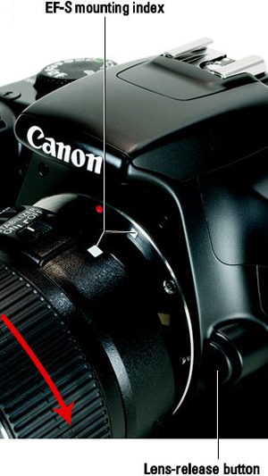 How to Attach or Remove a Lens from a Canon EOS Rebel T3