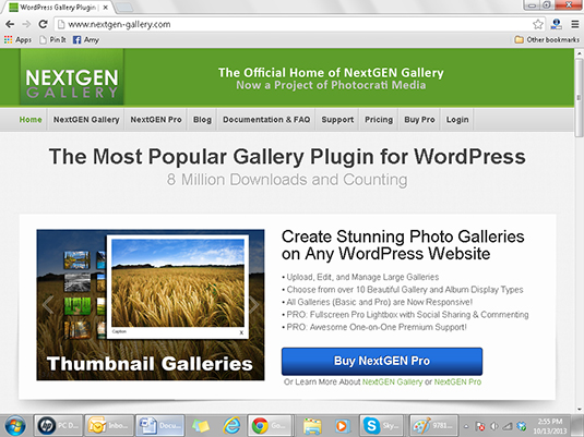 NextGen Gallery allows WordPress bloggers to create galleries of images.