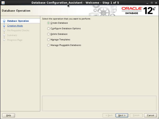 How to Use the Database Configuration Assistant (DBCA) to Create