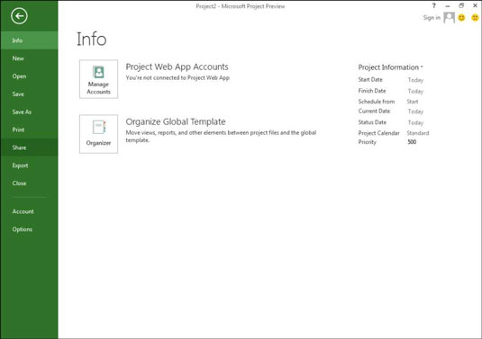 Project information in Microsoft Project.
