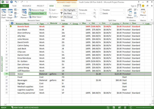 A Resource Sheet in Microsoft Project.