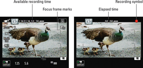 The display shows how many minutes of video will fit on your memory card (left) and, after you begi