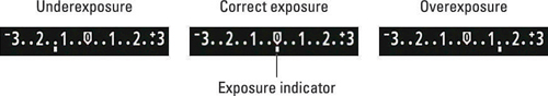 Figure 3: In manual exposure (M) mode, the meter indicates whether exposure settings are on target.