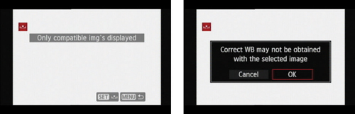 Your white image appears on the screen (left); press or tap Set and then confirm that you want to s