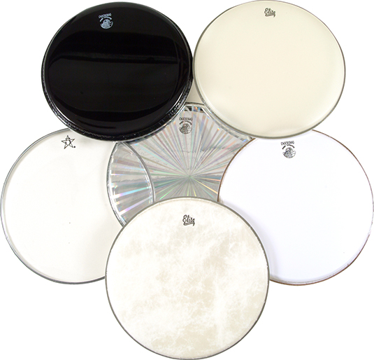 Banjo heads are available in different thicknesses and coatings and in a variety of designs. [Credi