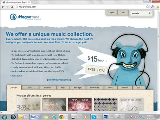 The Magnatude web page.