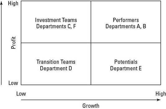 The Team/Business Unit Performance Matrix.