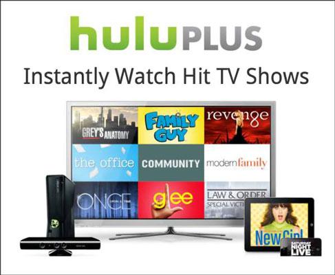 Hulu has jumped on the iPad wagon through its paid Hulu Plus service.