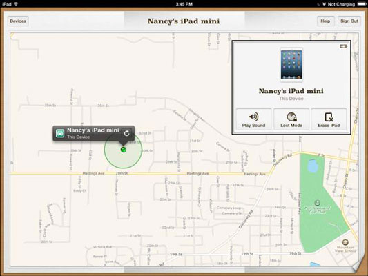 Find My iPad can pinpoint your iPad's location.