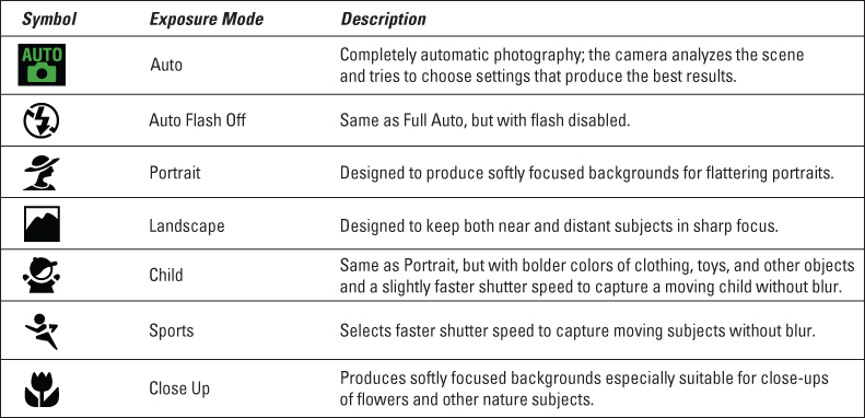 Automatic Exposure Modes on Your Nikon D5300 - dummies