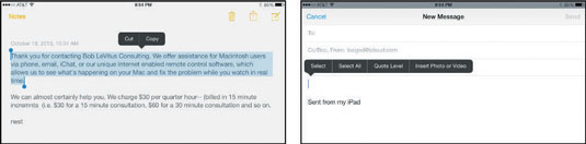 how to select cut copy and paste on the ipad mini dummies