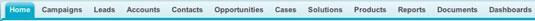 Navigating through the Salesforce tabs.