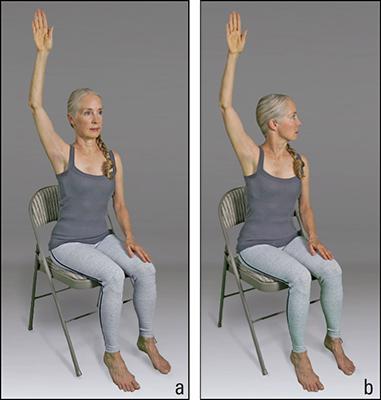 "<b/></noscript>Figure <b>2</b><b>:</b> Seated alternate arm raise sequence.""/> <div class="