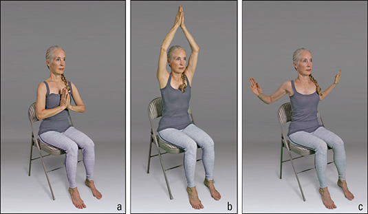 "<b/></noscript>Figure <b>4</b><b>:</b> Wing-and-prayer sequence.""/> <div class="