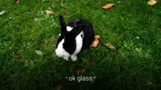 How To Take Photos With Google Glass Dummies