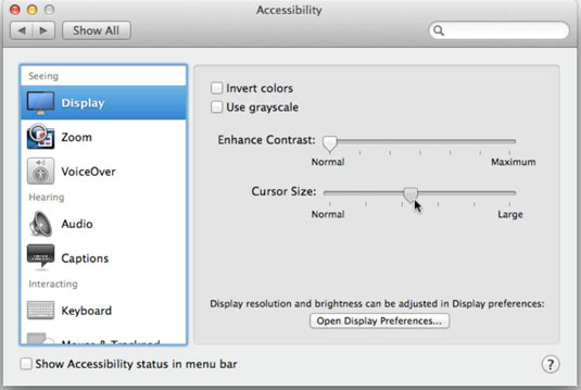 Set options for making your Mac easier to use.