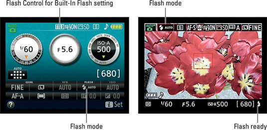 An icon representing the Flash mode appears in the displays.