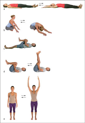 tips for developing your own yoga warmup routine  dummies