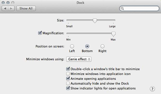 Customize your Dock by using these controls.