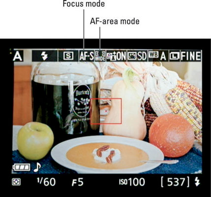 During Live View shooting, symbols representing the Focus mode and AF-area mode settings appear her