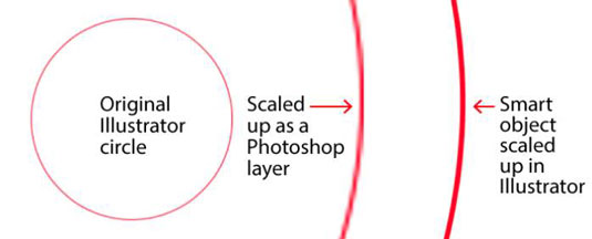 Seeing the differences between Photoshop and Illustrator.