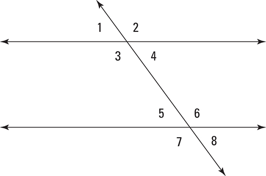 Knowing How    Angles     Lines  and Transversals Relate  dummies