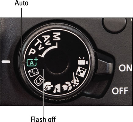 How to Use the Auto or Flash Off Mode on the Canon Rebel T5