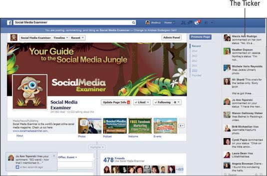 Social Media Examiner's Facebook page.