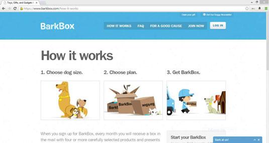 Subscription-Based Niche Online Business - dummies