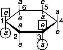 """The possible positions of <i/></noscript>cis substituents in positions 1 and 3 on cyclohexane.""""/> <div class="""