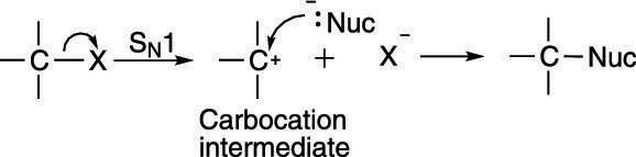 "The S<sub/></noscript>N1 mechanism.""/> <div class="