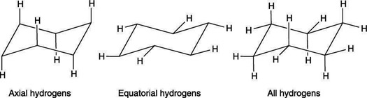 The axial and equatorial hydrogens on cyclohexane.