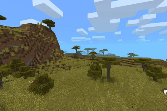 minecraft savanna biome