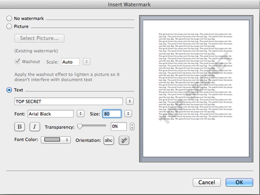 On the Insert Watermark dialog box you can choose to insert an image or text.