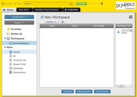 Figure 2: Branding your workspace For Dummies.