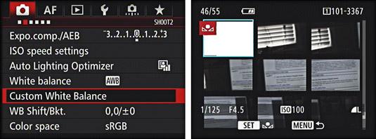 The Shooting menu of a Canon camera