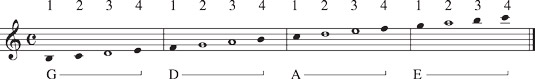 Notes you play in second position.