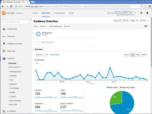 A typical Google Analytics dashboard displays key web statistics.