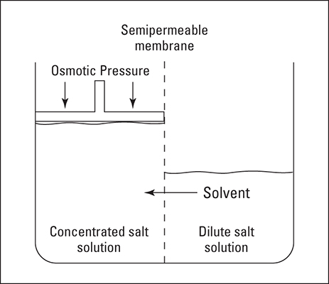 Osmotic pressure.